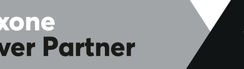 Loxone Logo Partner Silver